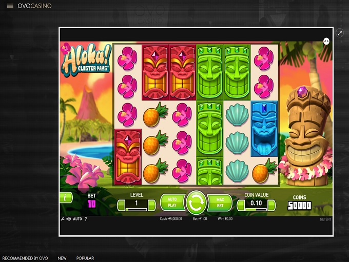 Play 5 Line Multiplay Slot Game Online | OVO Casino