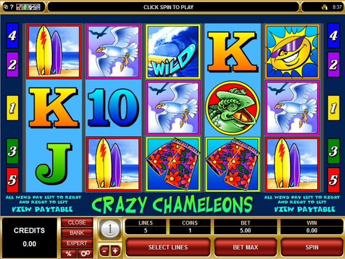 Free casino games for palm pilot game haunted 2