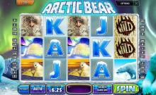 Arctic Bear by Multi Slot Casinos