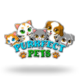 Purrfect Pets by Real Time Gaming