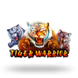 Tiger Warrior by Spadegaming