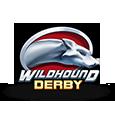 Wildhound Derby by Play n GO