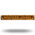 Whisker Jones by 1x2gaming