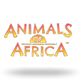 Animals Of Africa by Gold Coin Studios