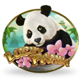 Lucky Panda by Playtech