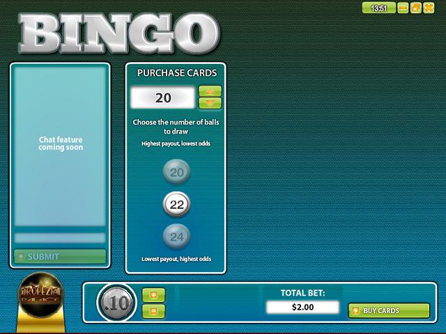 30 Ball Bingo by Rival