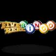 5 Reel Bingo by Rival