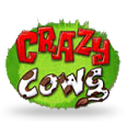 Crazy Cows by Play n GO
