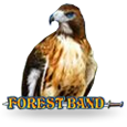 Forest Band by EGT