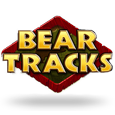 Bear Tracks by Novomatic