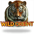 Wild Orient by MicroGaming