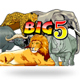 Big 5 by MicroGaming