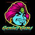 Genie's Gems by MicroGaming