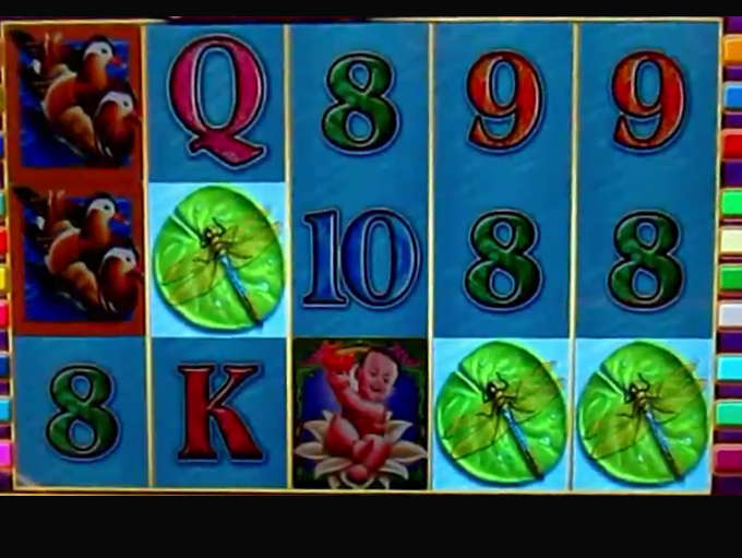 Play Lotus Flower Video Slot From Igt For Free